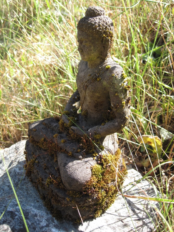 Small Buddha statue that resided outside my father's home